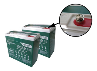 Kit Bateria 2unidades 24ah 12v Moto Elétrica 6-dzm-20 Global