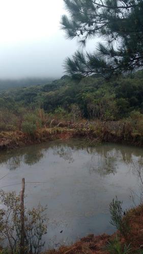 Área À Venda Com 135228m² Por R$ 600.000,00 No Bairro Zona Rural - Tijucas Do Sul / Pr - 91