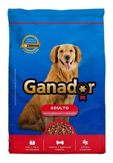 Alimento Ganador perro adulto raza mediana/grande 25kg