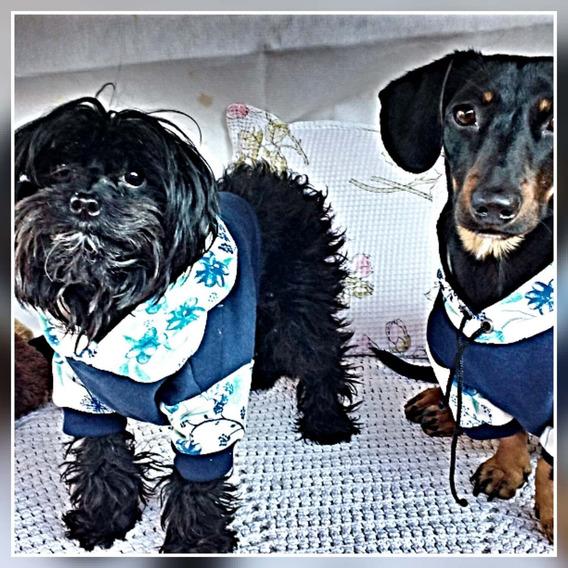Roupinhas (atacado) Nyl Pet Store