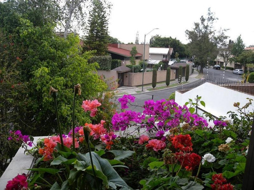Imagen 1 de 23 de Casa En Una De Las Mejores Calles De Bosques