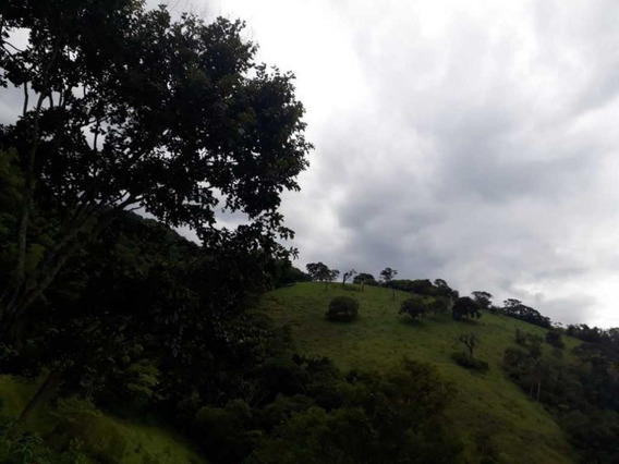 sítio A Venda Na Região Sul De Minas-mg - 8445