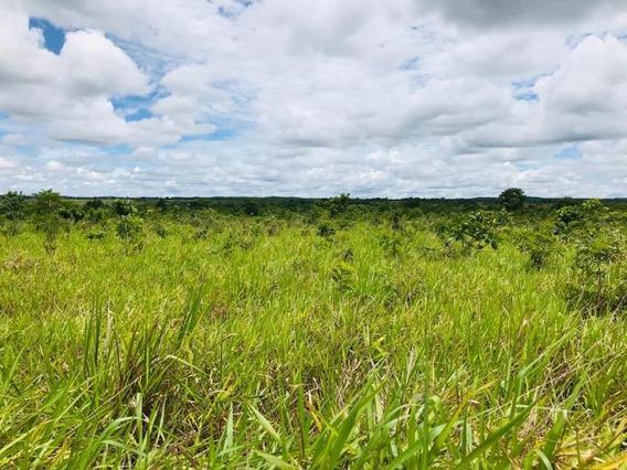 Sítio Para Venda Em Nossa Senhora Do Livramento, Zona Rural De Livramento, Br 070 - 829741