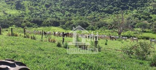 Fazenda Em Porto Ferreira-sp Com 130 Alqueires Por R$ 9.000.000,00 - Fa0176
