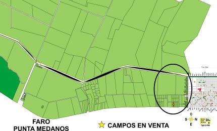 Sc466 - Campos Punta Médanos - Nueva Atlántis