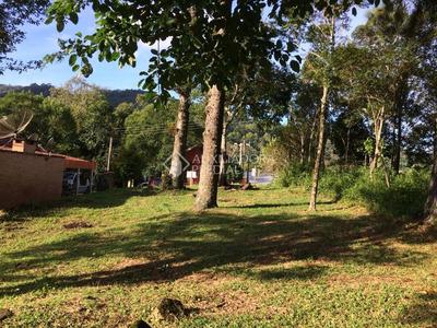 Terreno - Centro - Ref: 292104 - V-292104