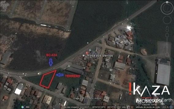 Área Em Garopaba De 3.133 83 M² - 3165