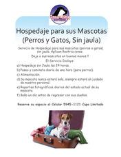 Hospedaje Para Mascotas (sin Jaula)