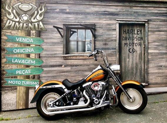 Harley Davidson Heritage Softail Carburada