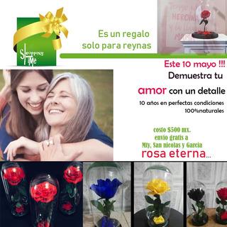 Rosa Eterna !! Ideal Para El 10 De Mayo ¡¡