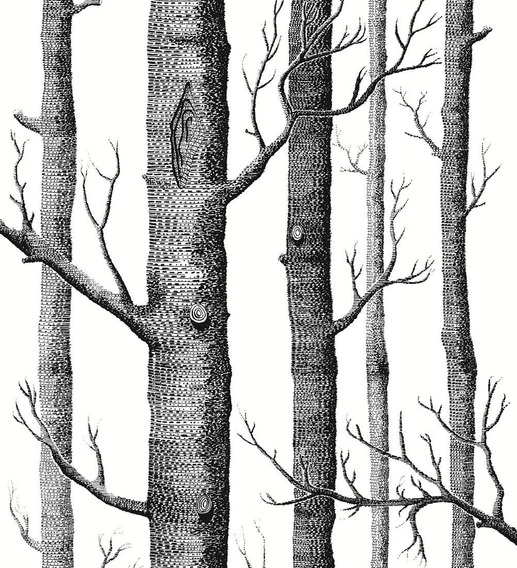 Papel Tapiz Decorativo Pintado En Rollo 53x56 Cm