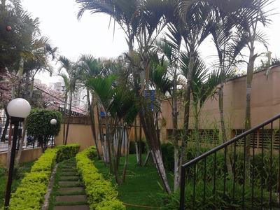 Vendo Ou Alugo Apartamento 02 Dormitórios Terminal Capelinha