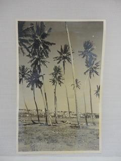Antiga Foto Do Alagoas