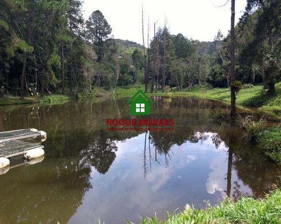 Chácara Juquitiba,2,5 Alqueires,nascente E Lago. Ref:0062