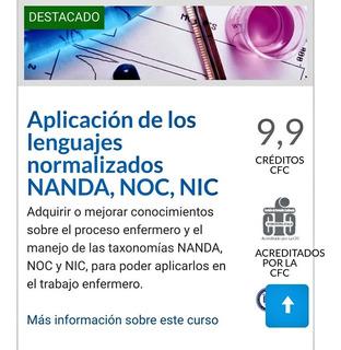 Aplicacion De Los Lenguajes Normalizados Nanda Noc Nic