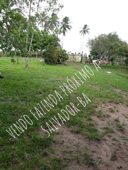 76 - Vendo Fazenda Próximo Á Salvador - Ba