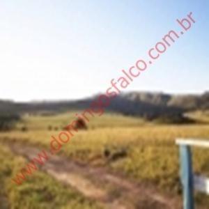 Venda - Fazenda - Zona Rural - São João Batista Do Glória - Mg - D6418