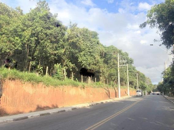 Terreno À Venda, 4149 M² Por R$ 6.500.000 - Chácara São João - Carapicuíba/sp - Te0455