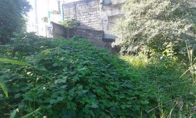 Terreno Em Jardim Anhangüera, São Paulo/sp De 0m² À Venda Por R$ 530.000,00 - Te84350