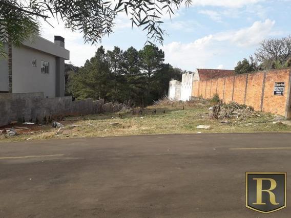 Terreno Para Venda, Sol Nascente - Santana - Tr-0028_2-936894