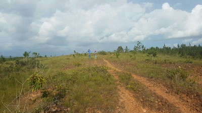 3. 200 Tareas Terrenos En Venta En Bayaguana