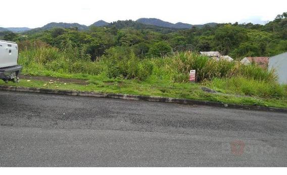 Terreno À Venda, 392 M² Por R$ 190.000,00 - Água Verde - Blumenau/sc - Te0011