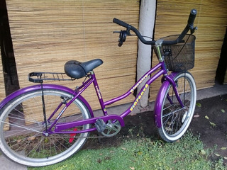 Bicicleta Fiorenza Modelo Eternity. Color Violeta. Una Joya!