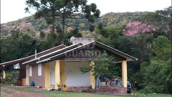 Sitio - Vila Suica - Ref: 201226 - V-201338