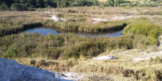 Fazenda Com 3 Quartos Para Comprar No Centro Em Esmeraldas/mg - 5985