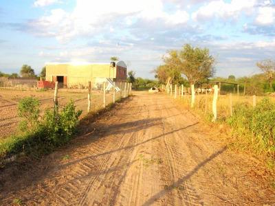 Campo De 325 Ha Con Galpón Y Potreros Alambrados A 20 Km De La Cañada En Santiago Del Estero