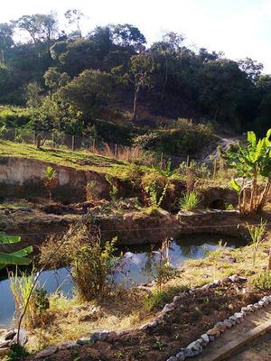 Chácara À Venda, 2 Quarto(s), Ribeirão Das Neves/mg - 550