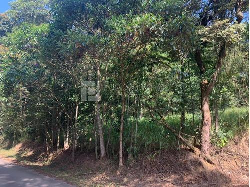 Chácara Para Venda Em Arujá, Parque Dos Jacarandás - Ch0012_1-1818381