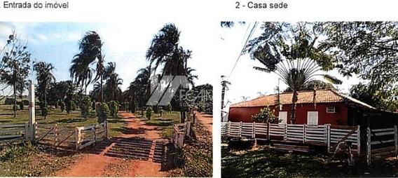 Fazenda Santa Vitoria Regiao Invernada (antiga Faz. Sao Jeronimo Grande), Santa Vitória, Santa Vitória - 163440