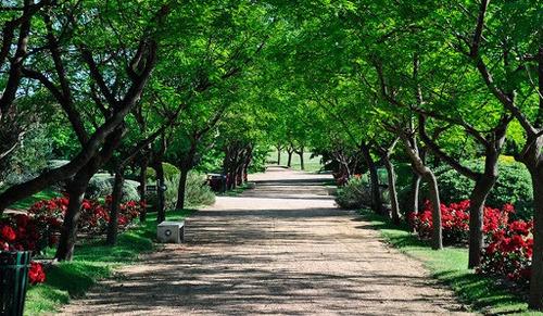Parcela En Parque Del Recuerdo