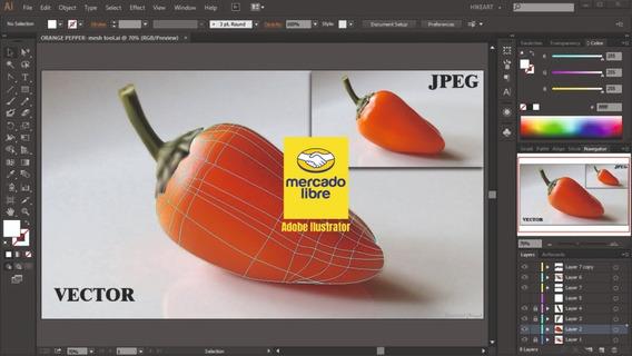Adobe Ilustrator Cc 2020 Mac/windows