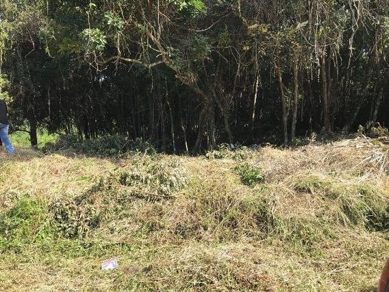 Terreno Para Chácara Em Itanhaém Medindo 1650 M2