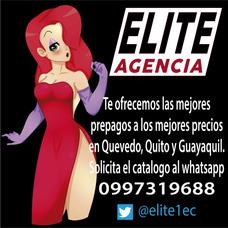 Elite Agencia Ecuador, Chicas Prepagos Quevedo Y Guayaquil