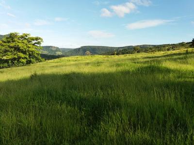 Vendo Troco Fazenda Regiao De Sao Jeronimo Serra-pr (6032)