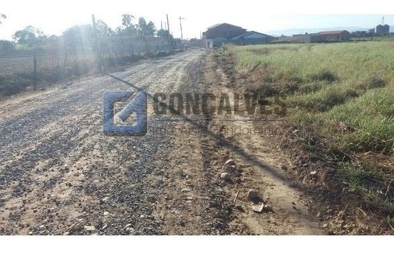 Venda Terreno Guaratingueta Bairro Colonia Ref: 137325 - 1033-1-137325