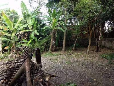 Terreno Comercial À Venda, Vila Santa Antônia, Diadema. - Te0006