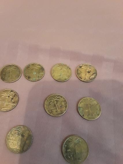 Vendo Nueve Moneda De Palmita