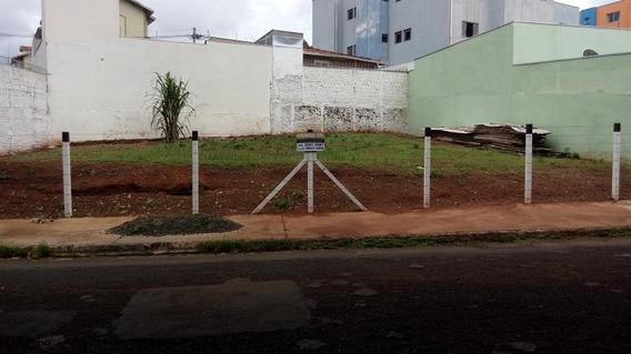 Terreno Para Venda Em São Carlos, Jardim Nova Santa Paula - Lt336