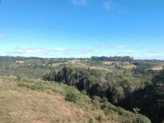 17b Terreno Em Área Rural 1000m2
