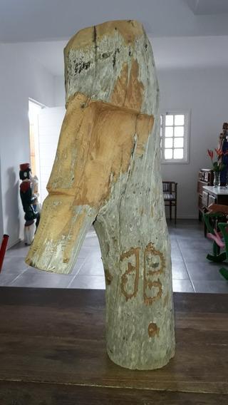José Bezerra ( Arte Popular Contemponêa)