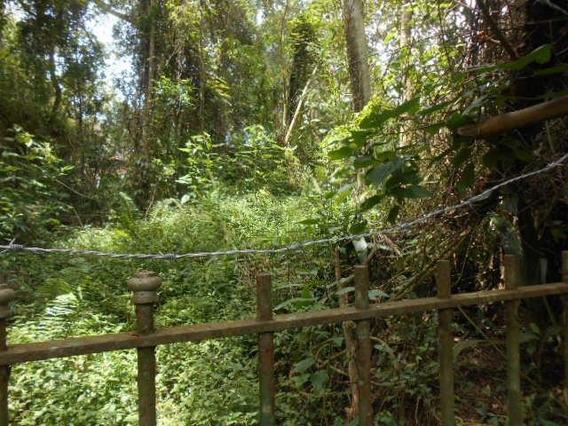 Área Em Parque Dos Caetes, Embu Das Artes/sp De 0m² À Venda Por R$ 850.000,00 - Ar322001