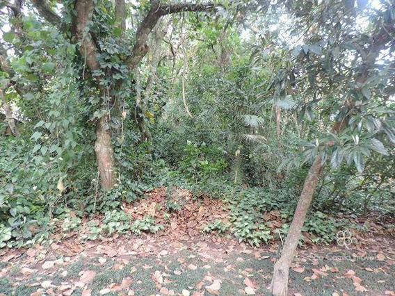 Terreno Residencial À Venda, Granja Viana, Condomínio Forest Hills, Jandira - Te0199. - Te0199