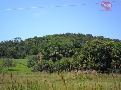 Fazenda A Venda No Bairro Setor Central Em Goiás - Go. - 260-1