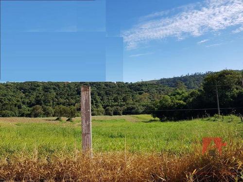 Terreno Rural Com Ribeirão À Venda, 10000 M² Por R$ 250.000 - Campestre - Pedra Bela/sp - Te1035