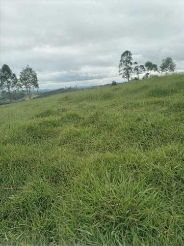 Imagem 1 de 14 de (k.a) 38mil A Vista Em Jacarei