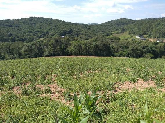 Area De 600m2 Com Linda Vista Da Natureza E Fácil Acesso J